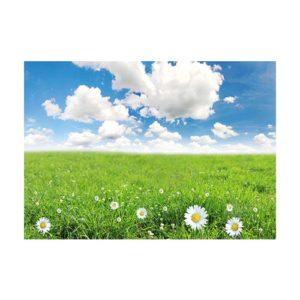 A2-grass field (1)